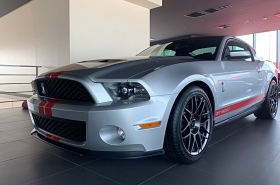 Ford - Mustang Shelby